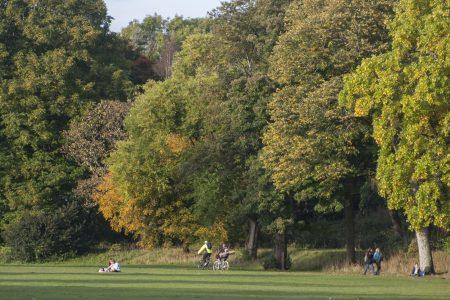 Bute Park Cardiff